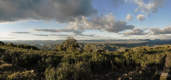 Vista panorámica de parajes naturales del Valle de Alcudia y Sierra Madrona