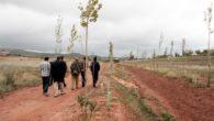 El Ayuntamiento de Terrinches, candidato al Premio Zerosion 2017 por su programa de reforestación del paraje de San Isidro