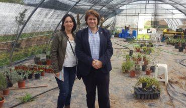 El Gobierno de Castilla-La Mancha subvenciona con 74.000 euros un taller de empleo sobre agricultura ecológica en Guadalmez