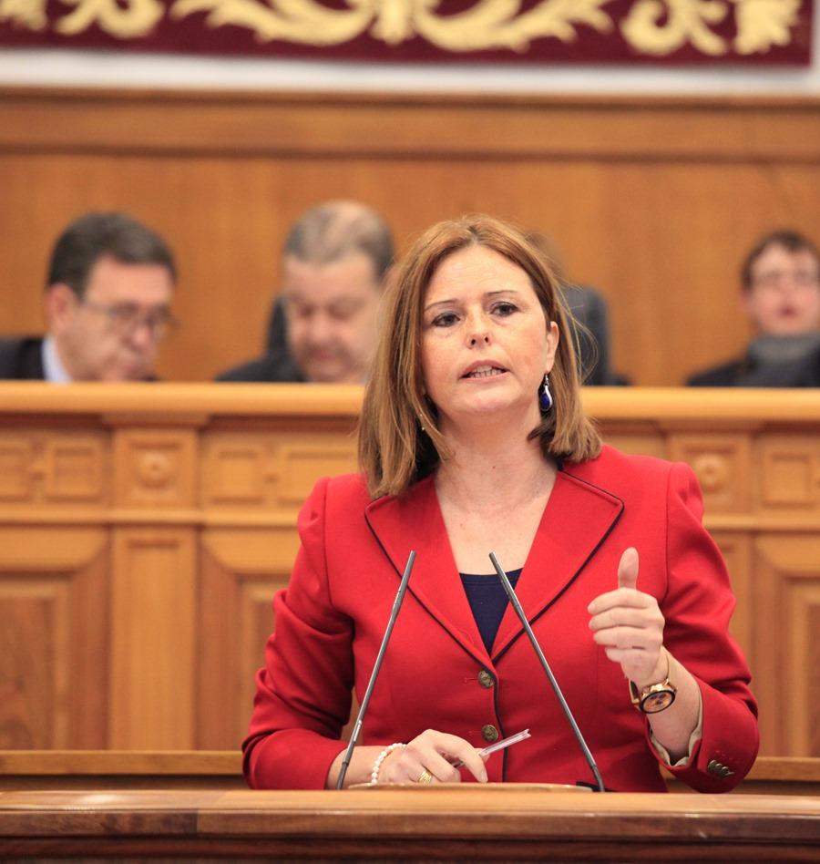 Cortes Valentín en el Pleno de las Cortes