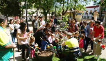 Niños de Socuéllamos plantan un olmo autóctono clonado y resistente a la grafiosis en el parque municipal