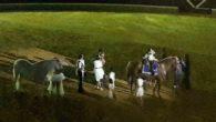 Gran éxito de la Escuela de Equitación de José Carlos Romero en el Coso Multifuncional de Almodóvar del Campo